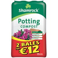 Shamrock  Potting Compost - 75 Litres